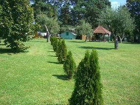 fű a sátrasoknak